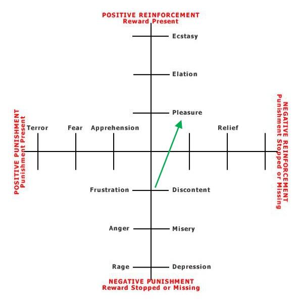 Positive Reinforcement Emotional Assessment Graph