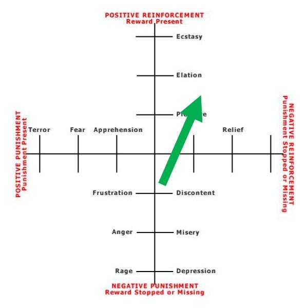 Positive Reinforcement Dog food Graph