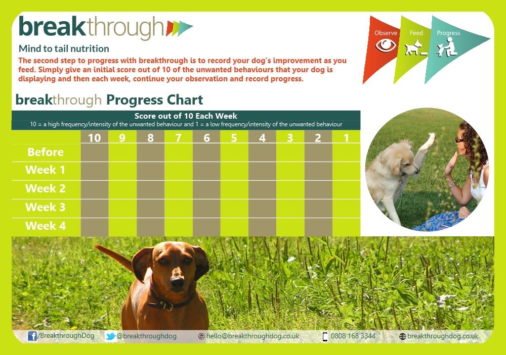 breakthrough-progress-image