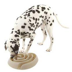 Dog Feeding Products